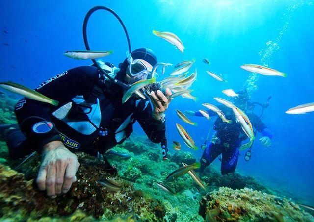 Câu cá -Lặn Bình khí - Khám phá Nam Đảo Phú Quốc 1 Ngày - 5