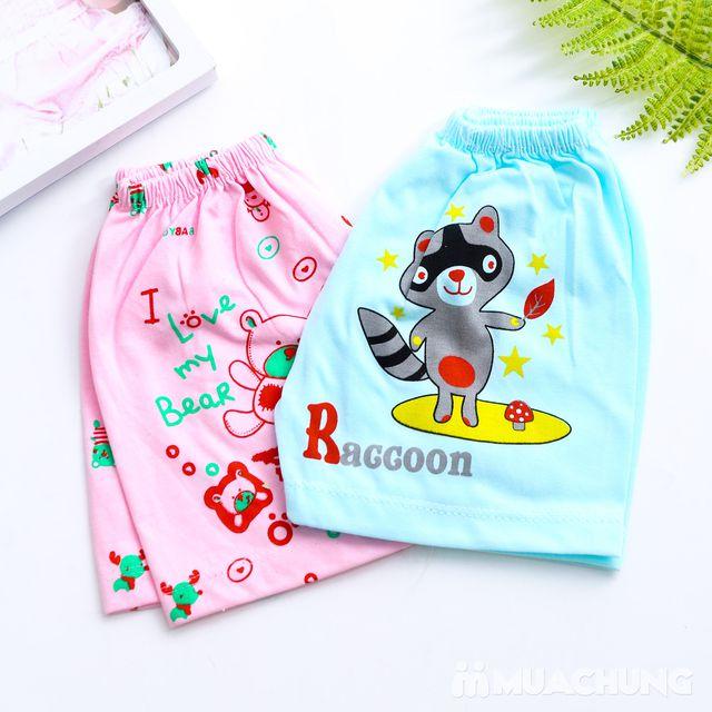Combo 10 quần đùi cotton cho bé - 7
