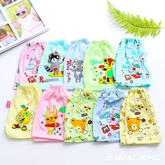 Combo 10 quần đùi cotton cho bé - 6