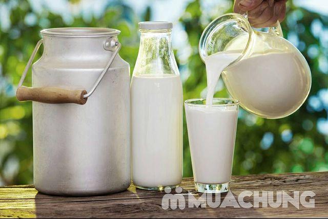 Combo 06 hộp sữa tươi ít béo PIEMONTE 1L - NK Ý - 12