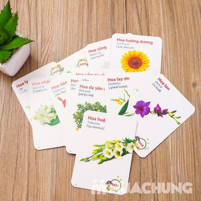 Bộ thẻ học song ngữ Anh- Việt 16 chủ đề và 416 thẻ - 10