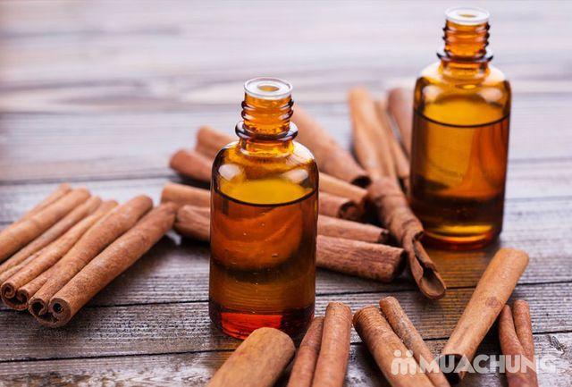 Tinh dầu quế 100% nguyên chất chai 50ml - 21
