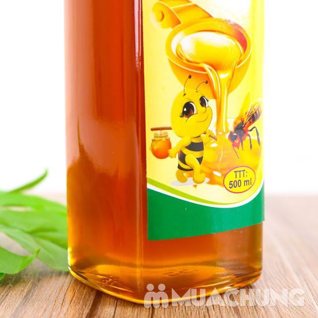 Mật ong rừng Tây Nguyên Anh Khoa Gia Lai 500ml - 8