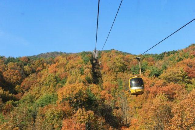 Land Tour Hàn Quốc: Daegu 2N1Đ - 11