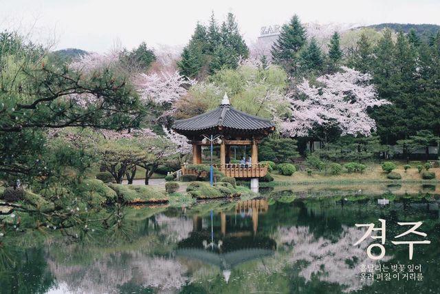 Land Tour Hàn Quốc: Daegu 2N1Đ - 2