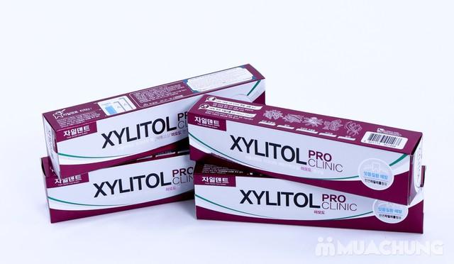 4 hộp kem đánh răng Xylitol cao cấp - 6