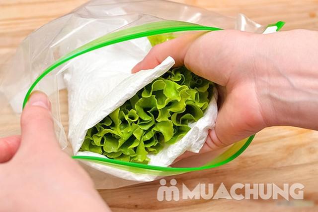 03 hộp túi đựng thực phẩm có khóa chắc chắn - 12