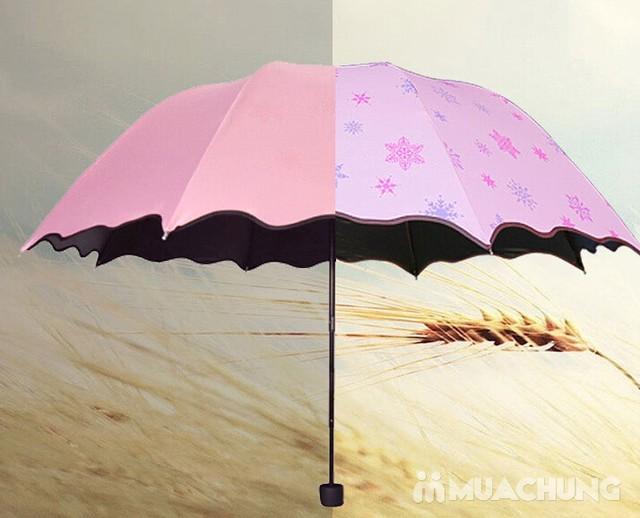 Ô gặp nắng nở hoa và chống tia UV hiệu quả - 1