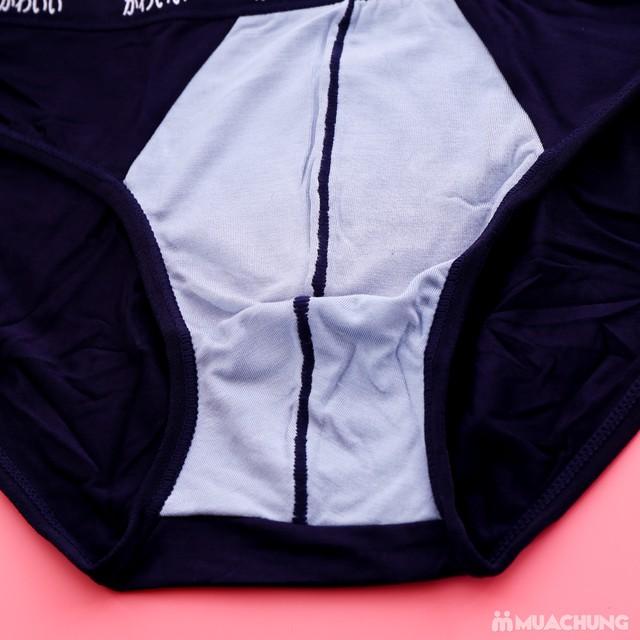 4 quần sịp tam giác xuất Nhật cotton mềm mịn - 8