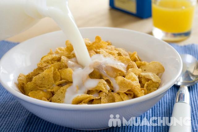 24 hộp sữa tươi Meadow Fresh full cream 250ml/hộp - 1
