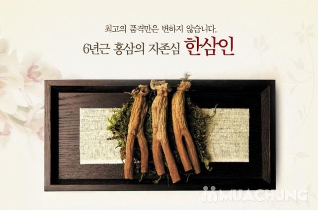 3 gói kẹo hồng sâm Hàn Quốc - 4