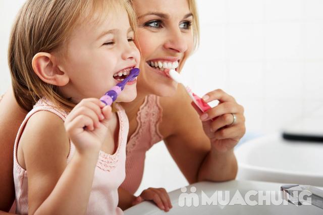 4 hộp kem đánh răng thảo dược Xylitol cao cấp - 5