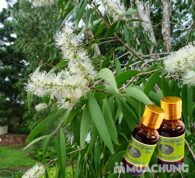 Tinh dầu sả chanh & tinh dầu tràm nguyên chất - 5