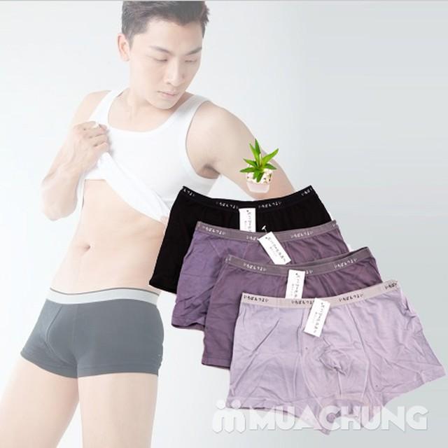 Combo 4 quần sịp đùi VNXK mềm mại, thoáng mát - 9