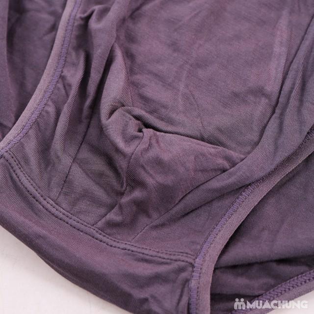 4 quần sịp tam giác cotton hàng xuất Nhật  - 6