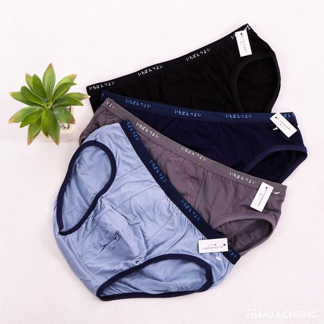 4 quần sịp tam giác cotton hàng xuất Nhật  - 3