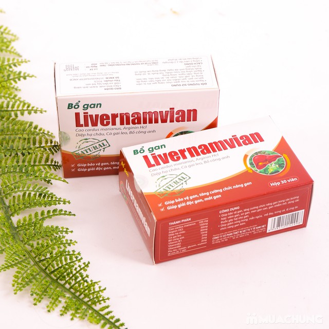 TPBVSK - 2 hộp Bổ gan Livernamvian (30 viên/1 hộp) - 14