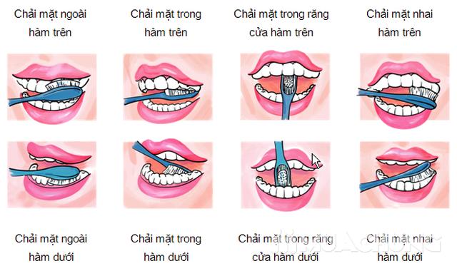 05 bàn chải đánh răng Bis Nano Hàn Quốc - 8