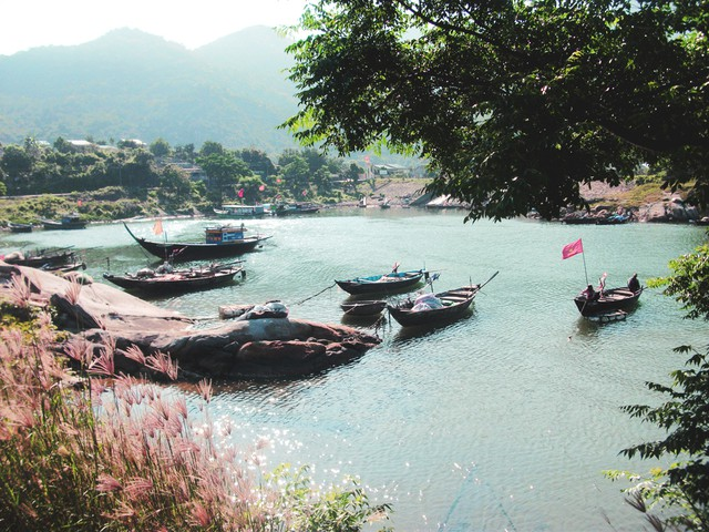 Cù Lao Chàm đi về trong ngày - Trải nghiệm vẻ đẹp của đảo khơi xa - 16