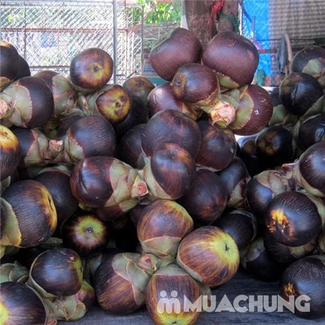 2 hộp đường thốt nốt Thành Lộc thơm dịu 500g/ hộp - 2