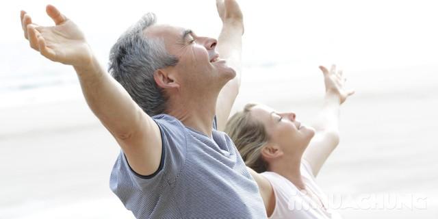 Nấm linh chi thái lát HQ - Thần dược cho sức khỏe - 1
