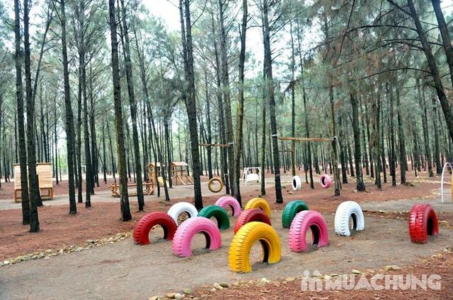 Vui chơi & ăn trưa cao cấp Flamingo Đại Lải Resort - 2