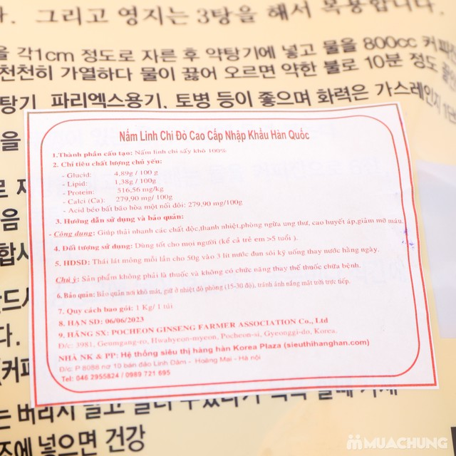 Nấm linh chi đỏ cao cấp Hàn Quốc tặng kẹo hồng sâm - 12