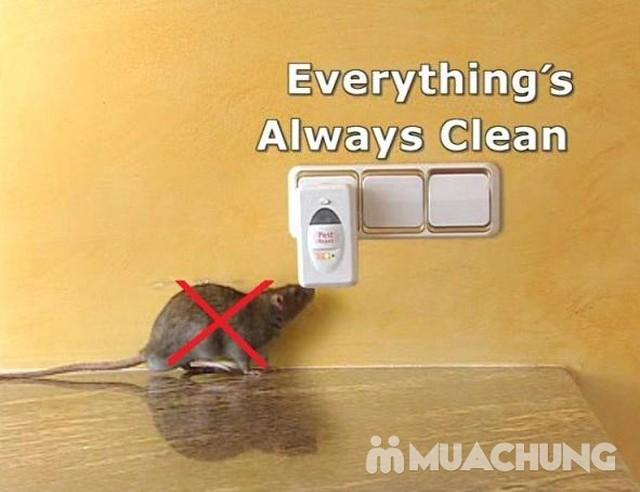 Máy đuổi chuột, gián, muỗi & côn trùng Pest Reject - 1