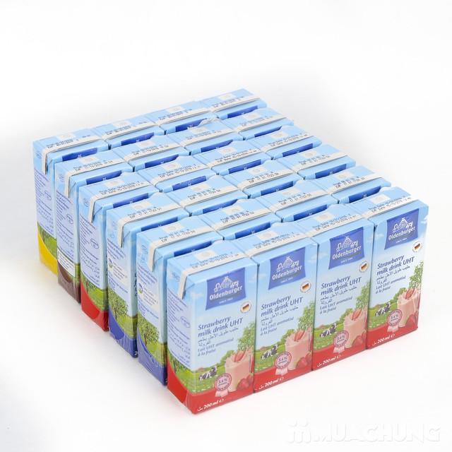 24 hộp sữa Oldenburger nhập khẩu Đức - 5