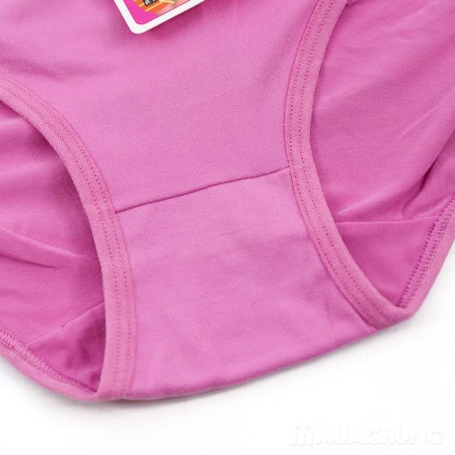 Combo 5 quần lót cạp cao chất cotton mềm mịn - 14