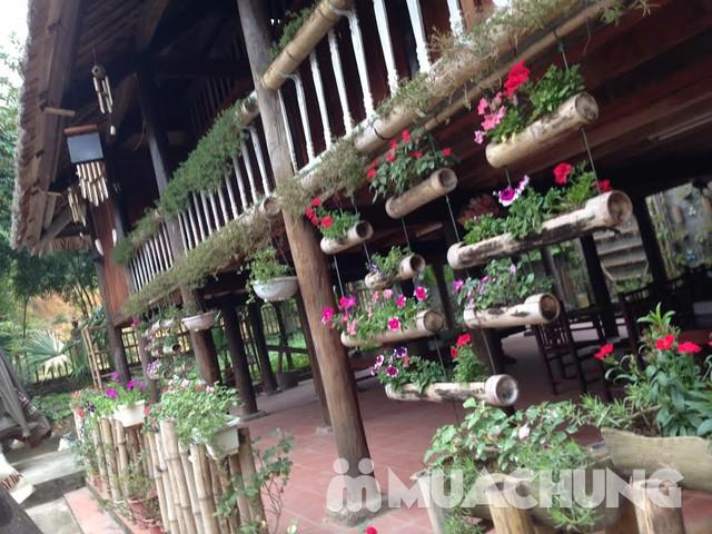 Thỏa sức vui chơi tại nhà vườn Rose House-Hòa Bình - 2