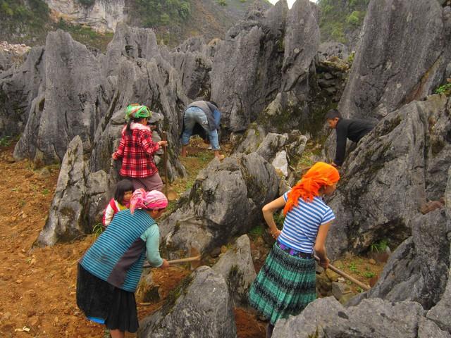 Tour Hà Giang - Sủng Là - Đồng Văn - Lũng Cú 3N2Đ - 10