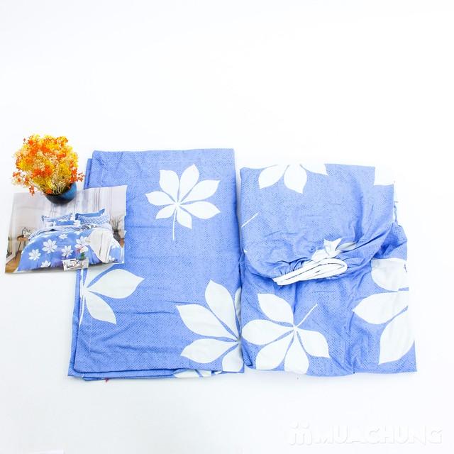 Bộ ga chun & gối cotton poly họa tiết 2.2x2m - 7