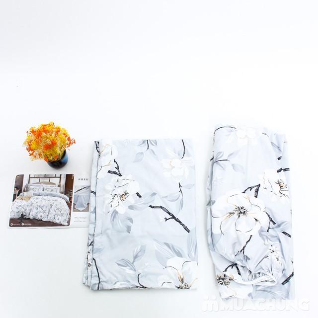 Bộ ga chun & gối cotton poly họa tiết 2.2x2m - 4