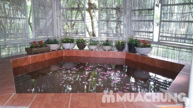 Làm chủ toàn bộ nhà vườn Rose House 2N1Đ- Hòa Bình - 4