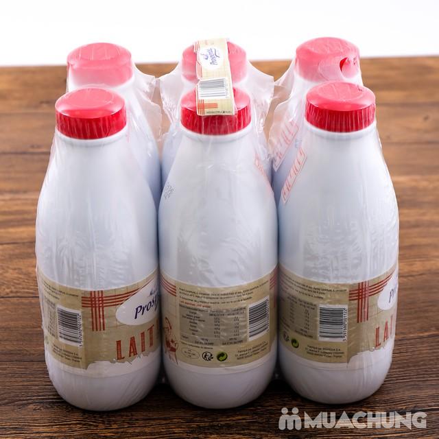06 hộp sữa tiệt trùng nguyên kem Prosperite - Pháp - 6