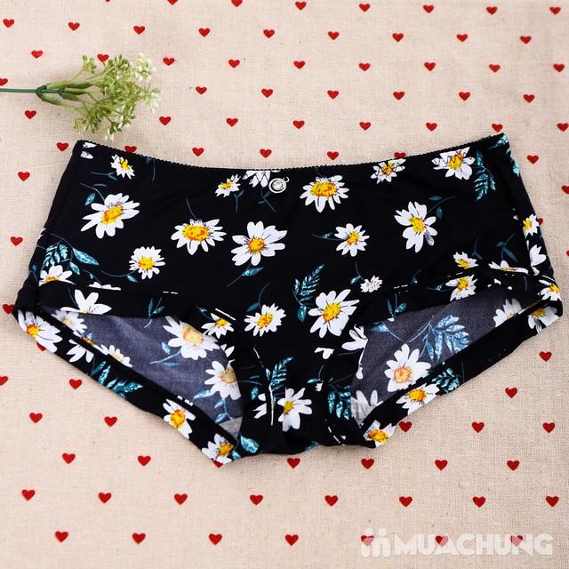 Combo 5 quần lót đúc hoa - hàng Việt Nam - 3