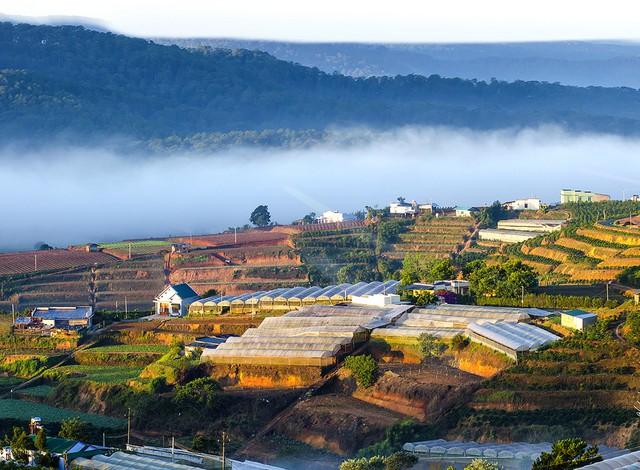 Làng Đất Sét - Chùa Linh Phước - Cà phê Chồn - Ga Đà Lạt 1 Ngày - 23