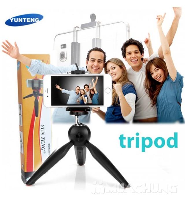 Tripod mini Yunteng YT-228 cho máy ảnh, điện thoại - 17
