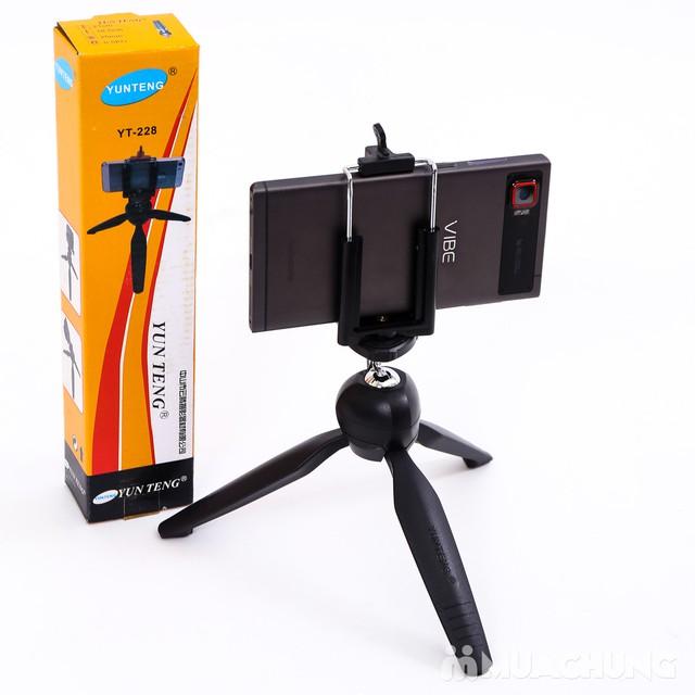 Tripod mini Yunteng YT-228 cho máy ảnh, điện thoại - 8