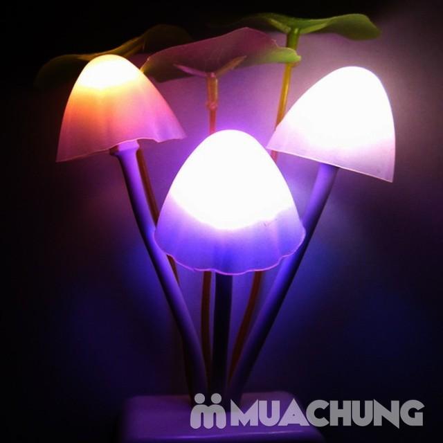 Combo 2 Đèn ngủ hình nấm cảm ứng ánh sáng - 1