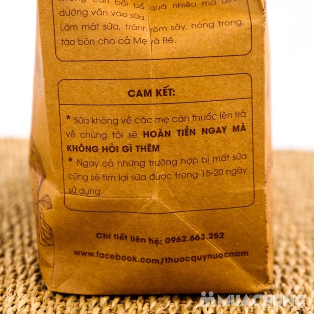 Thảo mộc lợi sữa từ thuốc nam MotherLland - 8