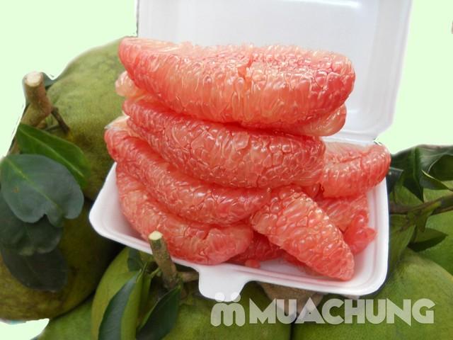 3 quả bưởi da xanh Hương miền Tây (~ 1kg/quả) - 8