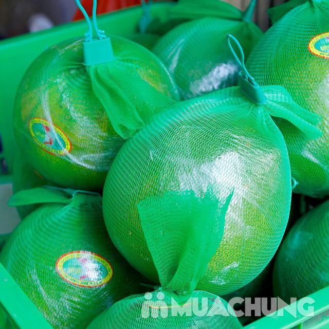 3 quả bưởi da xanh Hương miền Tây (~ 1kg/quả) - 9