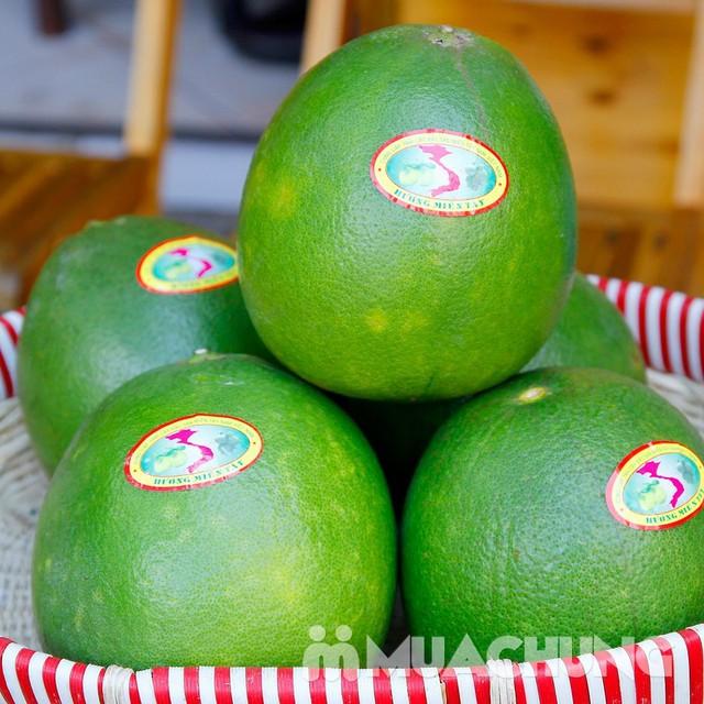 3 quả bưởi da xanh Hương miền Tây (~ 1kg/quả) - 5