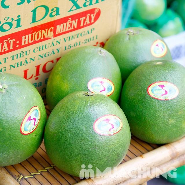 3 quả bưởi da xanh Hương miền Tây (~ 1kg/quả) - 7