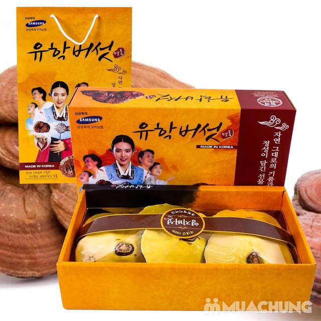 1kg Nấm Linh Chi thượng hạng nhập khẩu Hàn Quốc - 7