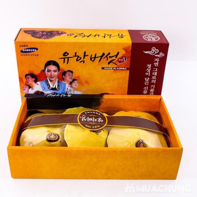 1kg Nấm Linh Chi thượng hạng nhập khẩu Hàn Quốc - 10