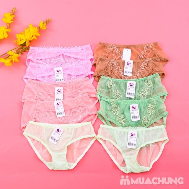 Combo 10 quần lót ren lưới quyến rũ cho bạn gái - 8