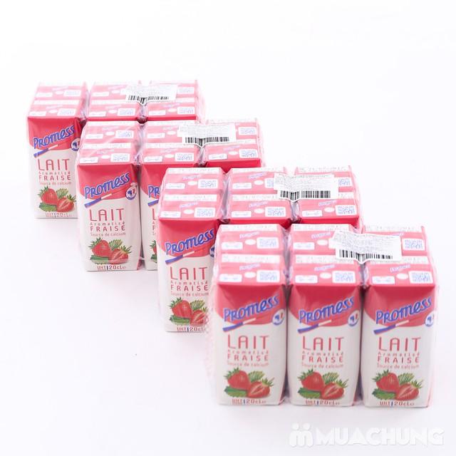 Thùng 24 hộp sữa tươi Promess NK Pháp (200ml/1hộp) - 3
